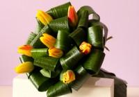 tulipas 4 - Jardim da Celeste