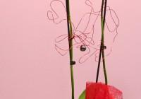 orquídea duas hastes 2 - Jardim da Celeste